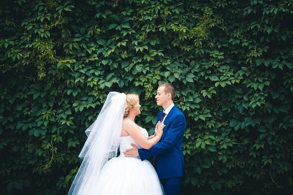 Ярослав и Анна - фото №24