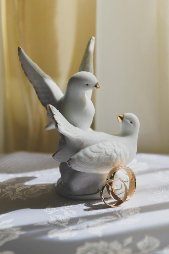 Любовь и голуби - фото №6