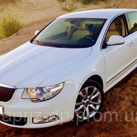 Skoda Superb white 4X4 - авто на свадьбу в Днепре - портфолио 1