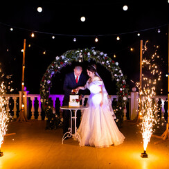 Антонина Иванив - свадебное агентство в Херсоне - фото 1