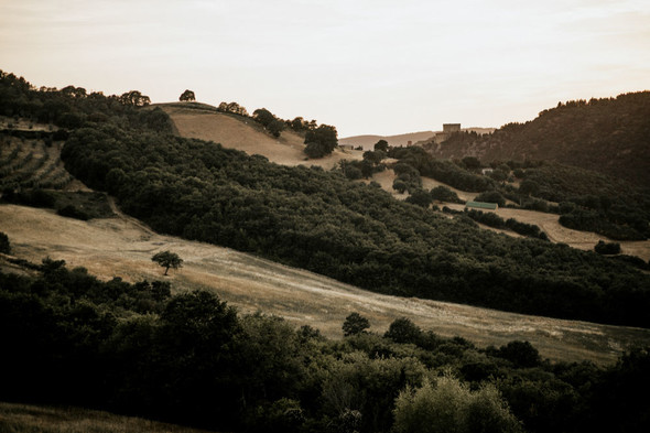Tuscany Wedding - фото №84