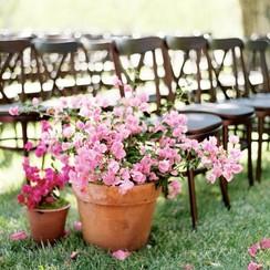 Pink Flower Studio - фото 4