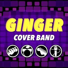 Музыканты, DJ GINGER Cover Band