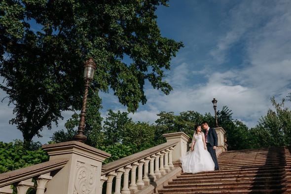 Вьетнамская свадьба - фото №14