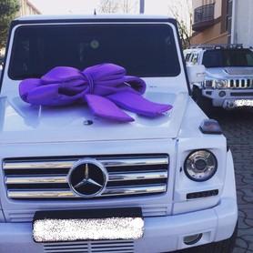 Mercedes G-class (кубик) Чорний і Білий - авто на свадьбу в Хусте - портфолио 2