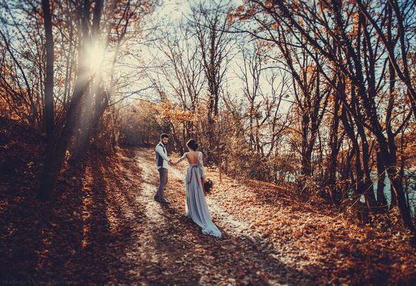 Сладкий ноябрь - фото №12