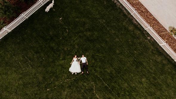 Retriver Wedding - фото №146