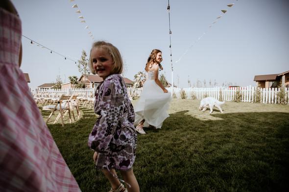 Retriver Wedding - фото №82