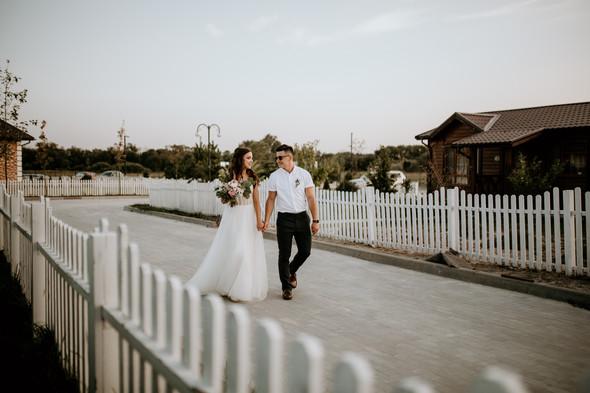 Retriver Wedding - фото №153