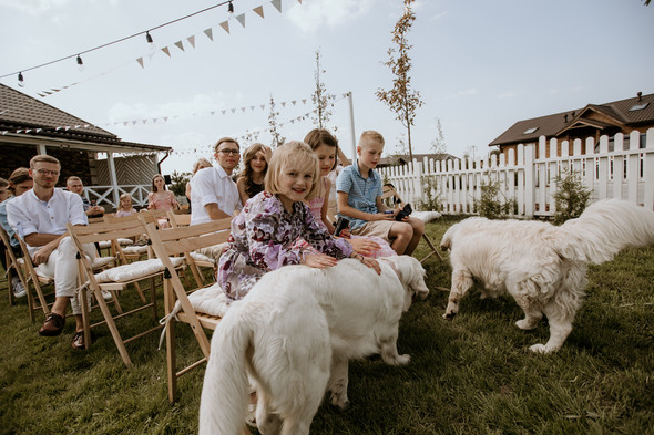 Retriver Wedding - фото №41