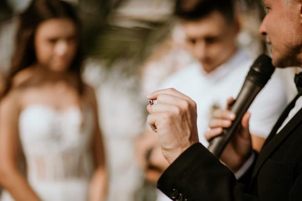 Retriver Wedding - фото №50
