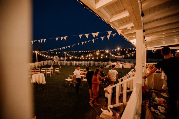Retriver Wedding - фото №171