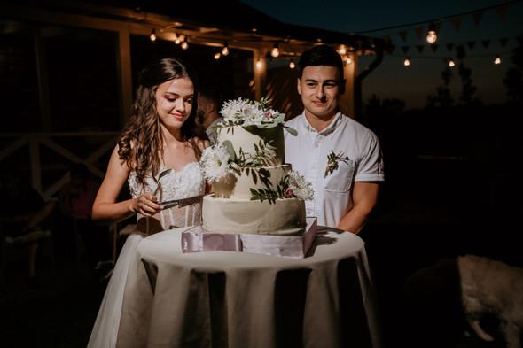 Retriver Wedding - фото №165