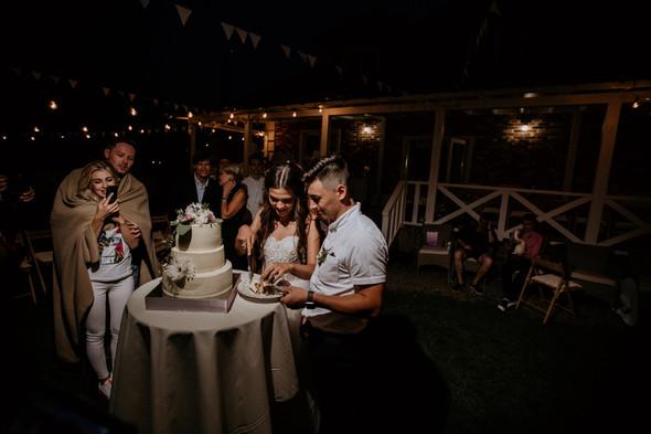 Retriver Wedding - фото №167