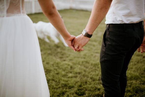 Retriver Wedding - фото №149