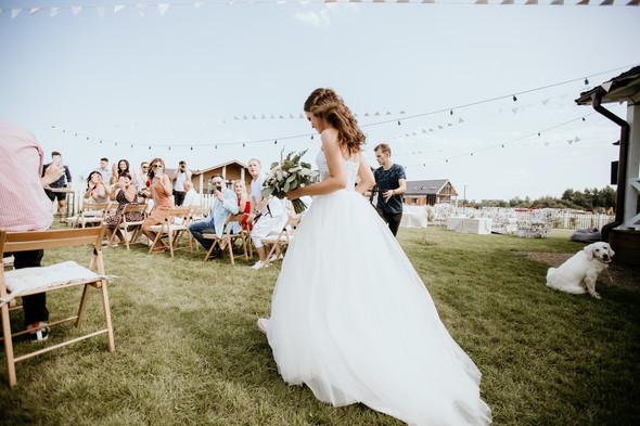 Retriver Wedding - фото №37