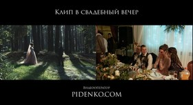 Александр Пиденко - фото 3