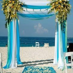 "Wedding agency  ""Славне свято"" - свадебное агентство в Черновцах - фото 3"
