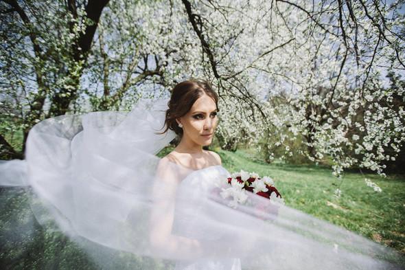 Spring Love - фото №24