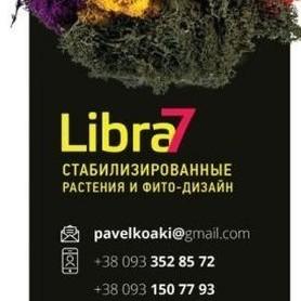 Либра7