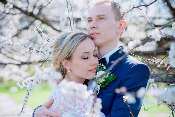Свадьба 21.04.2018 - фото №11