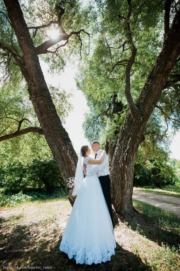 Свадьба - 21.06.2019 - фото №9