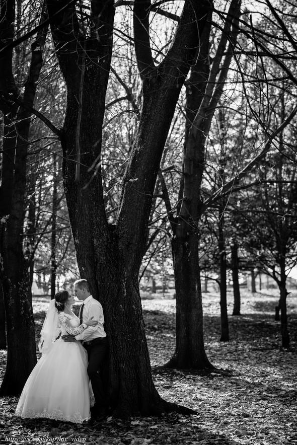 Свадьба 28.10.2018 - фото №17