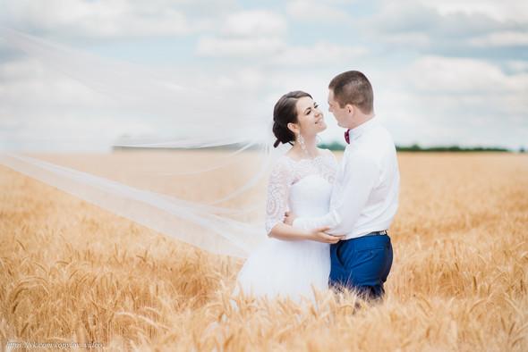 Свадьба - 29.06.2019 - фото №5
