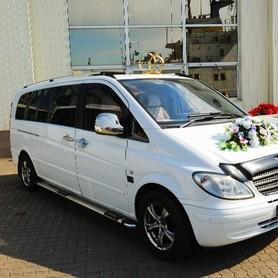 Заказ микроавтобусов в Одессе. - авто на свадьбу в Одессе - портфолио 1