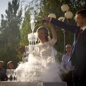 Дарья Шостак - свадебное агентство в Бердянске - портфолио 2
