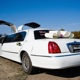 Lincoln 2011  - портфолио 1