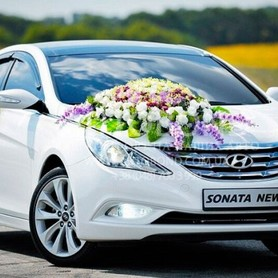 Hyundai Sonata  - портфолио 1