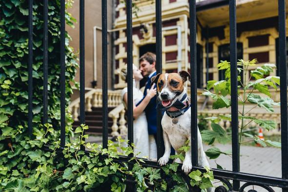 Диана и Денис - фото №28