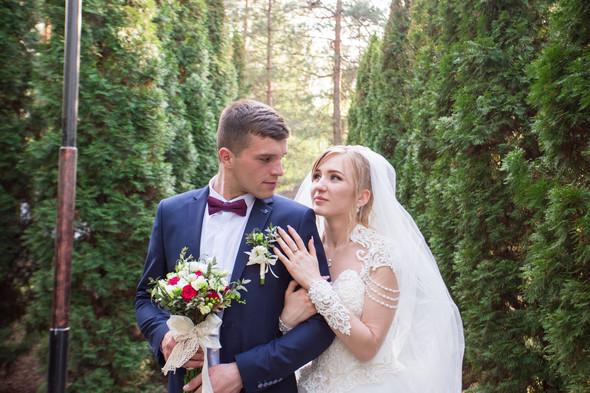 Анастасия и Алексей - фото №16