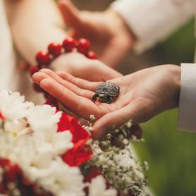 Candy  Life - свадебное агентство в Харькове - портфолио 3
