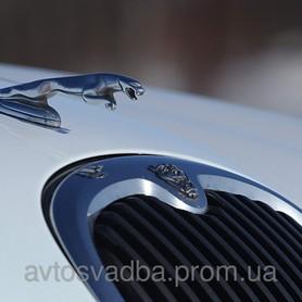 Jaguar Escape  - портфолио 4