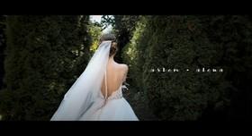 Roshin-Video - фото 2