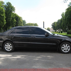 Mercedes S500 W220 - авто на свадьбу в Полтаве - портфолио 3