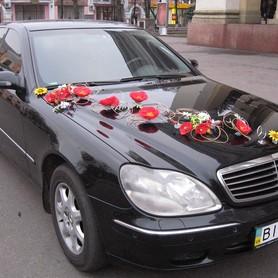 Mercedes S500 W220 - авто на свадьбу в Полтаве - портфолио 1