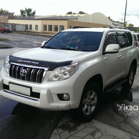 Toyota Land Cruiser PRADO  - портфолио 2