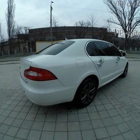 Skoda Superb - авто на свадьбу в Кривом Роге - портфолио 4