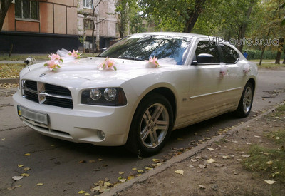 VIP auto - фото 1