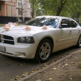 Dodge Charger  - портфолио 1