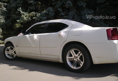 VIP auto - фото 2