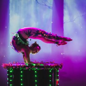 Marina Medvedeva - артист, шоу в Киеве - портфолио 6