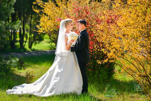 Красивая свадьба в классическом стиле Юлии и Виталия - фото №11
