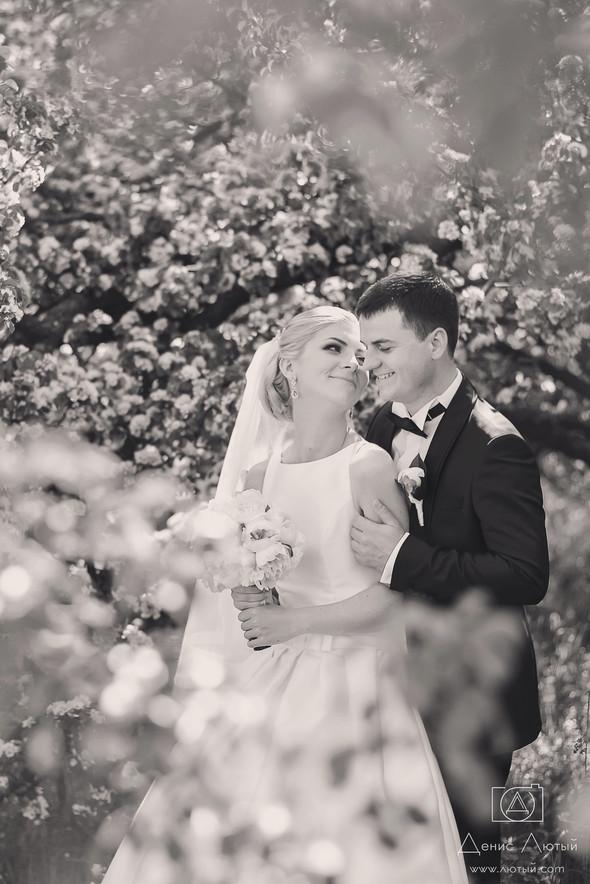 Красивая свадьба в классическом стиле Юлии и Виталия - фото №20