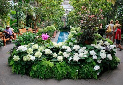 Ботанический сад им. Гришко - место для фотосессии в Киеве - портфолио 5