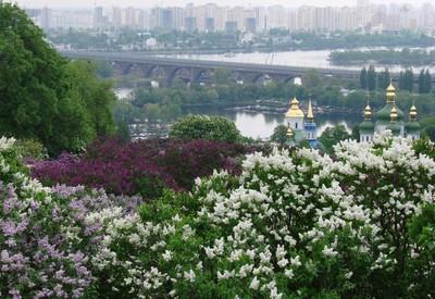 Ботанический сад им. Гришко - место для фотосессии в Киеве - портфолио 1