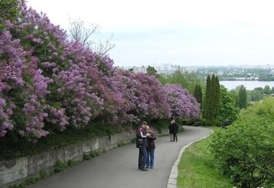 Ботанический сад им. Гришко - место для фотосессии в Киеве - портфолио 6